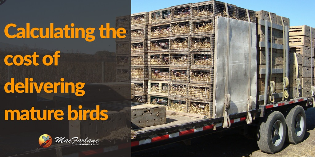 How do we Calculate the Cost of Delivering Mature Birds?