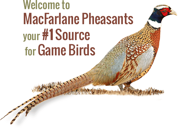 MacFarlane Pheasants Forms Unique Partnership with Rock Valley Community Programs