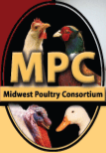 Awesome Intern Program at MacFarlane Pheasants