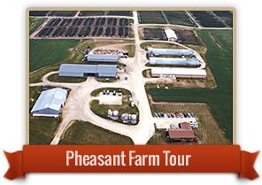 Plan Ahead for MacFarlane Pheasant Farm Tours!